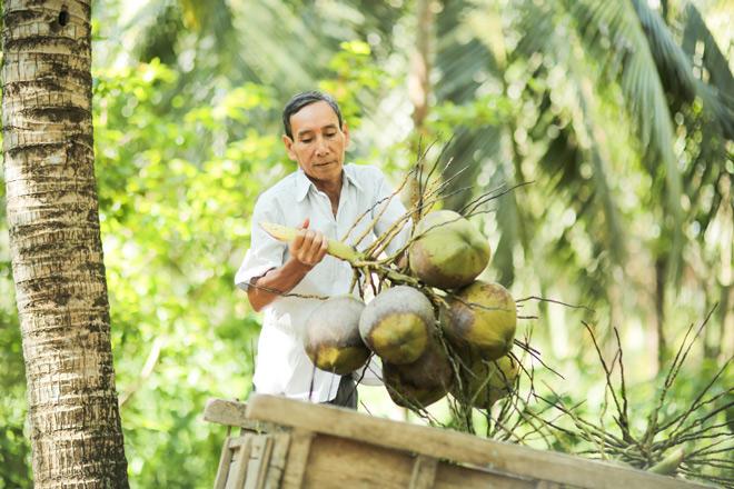 Nước cốt dừa tươi Cocoxim, tuyệt chiêu nấu món ngon chuẩn nhà hàng