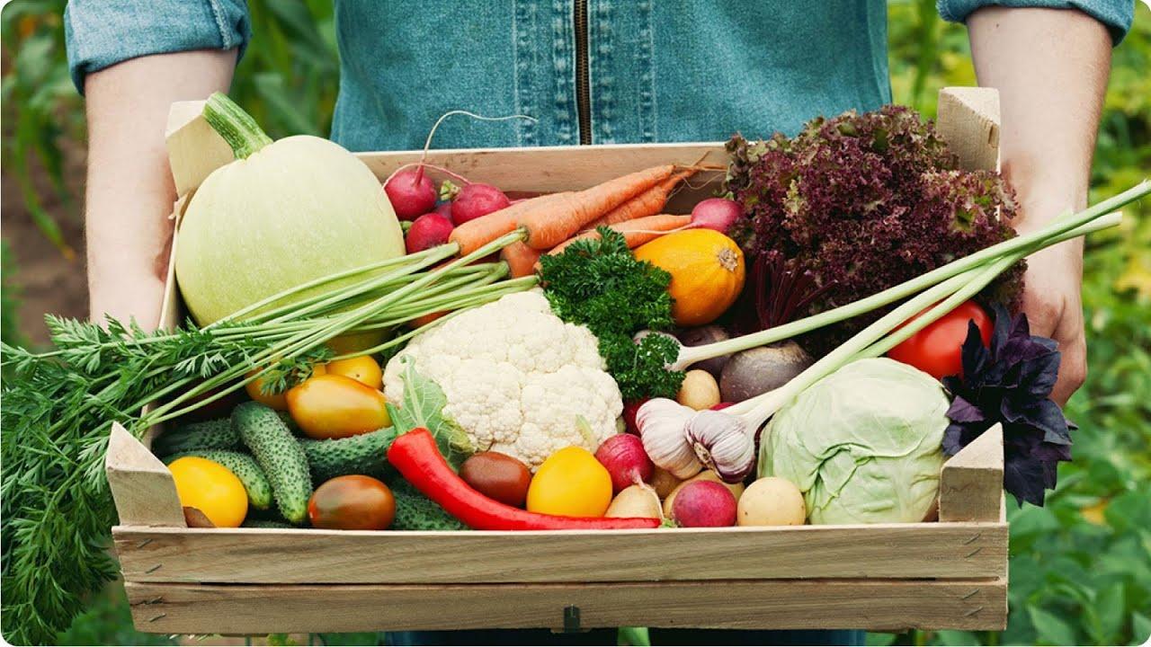 """Hãy là người tiêu dùng thông thái giữa """"ma trận"""" thực phẩm bẩn!"""